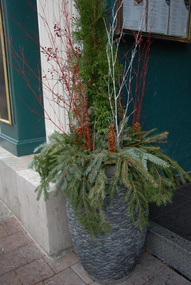 Planters can be decorated with twigs, berries and everygreen boughs to create a display with winter interest.